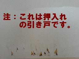 2008.3.17b.JPG