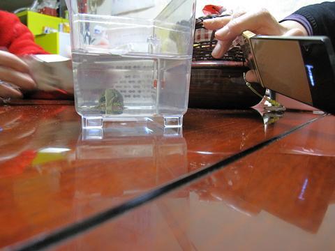 2011.11.5_2200b.JPG